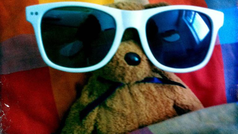 Der Teddy von Moderatorin Sonja mit Sonnenbrille.
