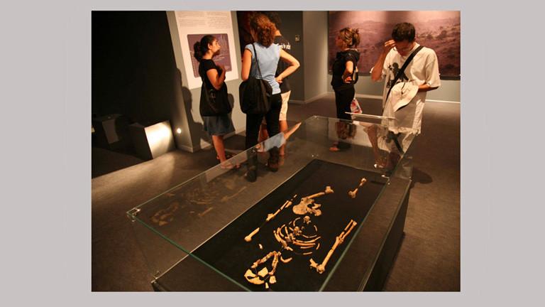 Besucher eines Museums in Algerien betrachten die fossilen Überreste von Lucy. Die Knochen liegen in einer Vitrine.
