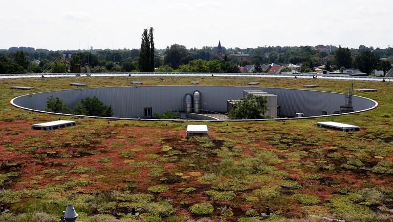 Hasu mit einem begrünten dach in Berlin Adlershof, das Regenwasser aufsaugen soll.