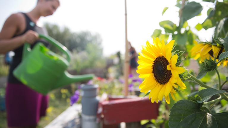 Eine Frau gießt Blumen im Garten