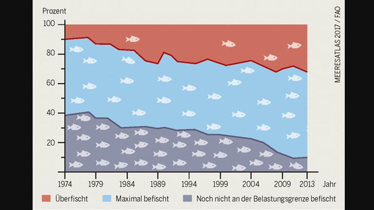 Grafik zeigt die Überfischung der Meere