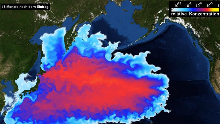 In einem Modell wird die Ausbreitung radioaktiver Stoffe im Meer gezeigt