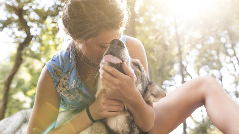 Haustiere: Zu viel Kuscheln kann tödlich sein