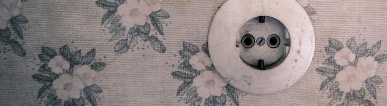 Steckdose an einer Wand mit Blumentapete