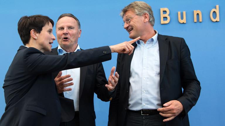 DPA: AfD-Bundesvorsitzenden Frauke Petry zusammen mit Georg Pazderski und Jörg Meuthen
