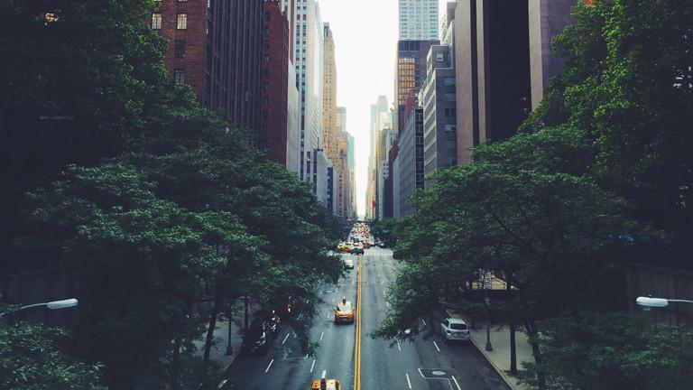 Straßenschlucht mit Bäumen in New York