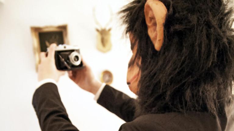 Selfies sind manchmal wirklich tierisch gefährlich - für den Fotografen und das Motiv.