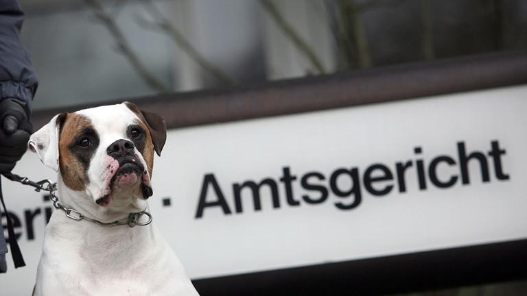 Hund vor Gericht