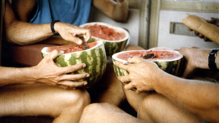 Menschen essen gemeinsam Melone