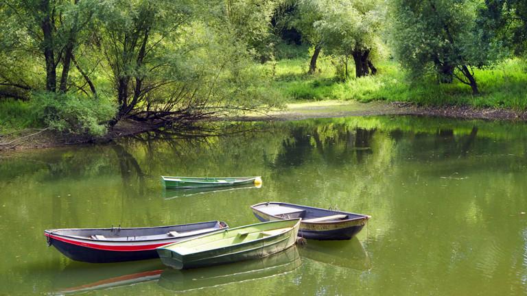 Boote in der Siegaue