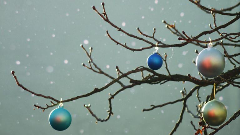 Baum, geschmückt mit Weihnachtskugeln