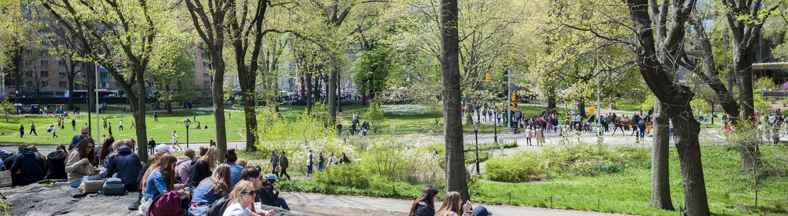 Menschen sitzen in einem Park.