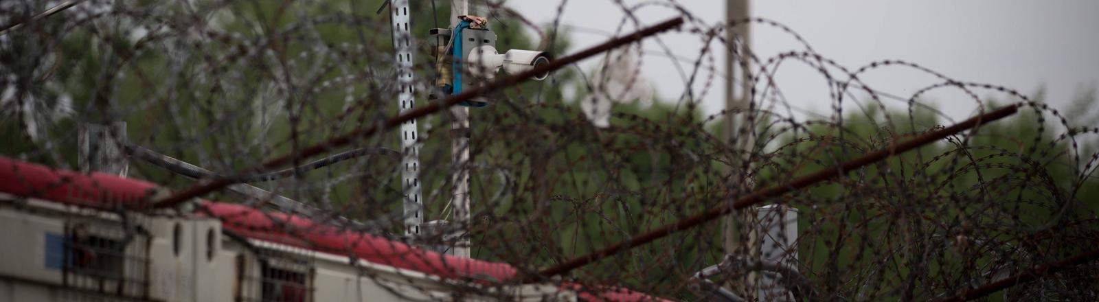 Grenzzaun mit Stacheldraht an der ungarischen Grenze