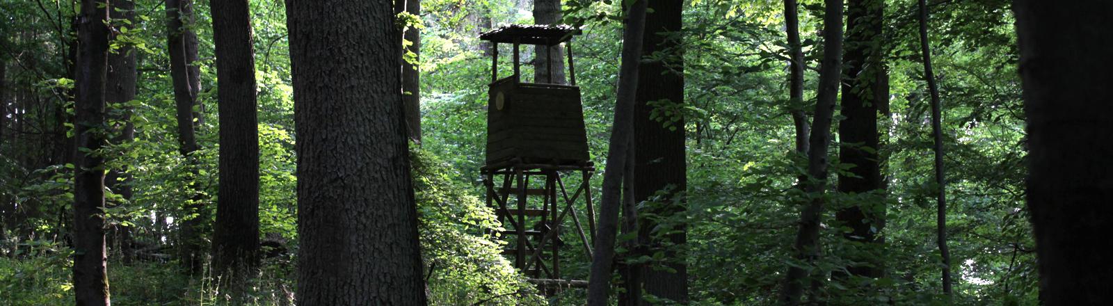 Ein Hochsitz für Jäger im Wald