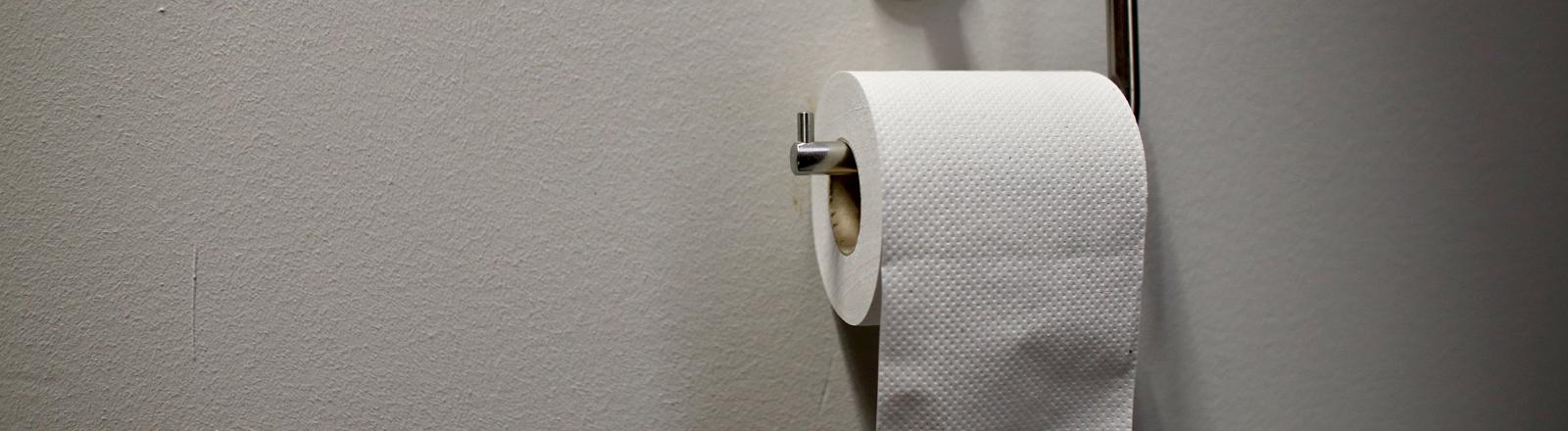 Toilettenpapier in einer Aufhängung