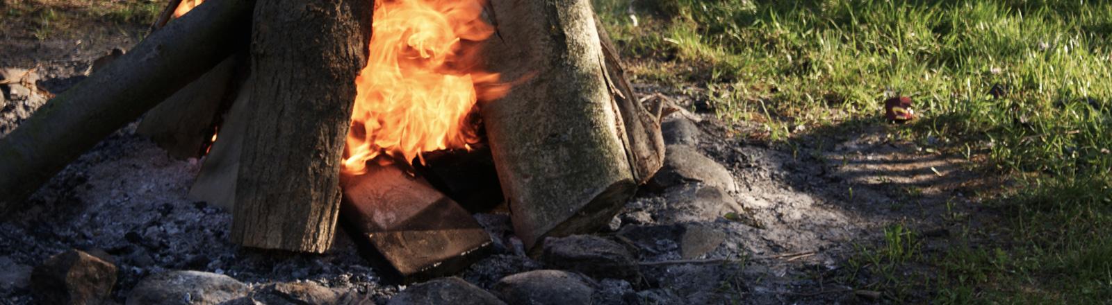 Lagerfeuer auf der Wiese