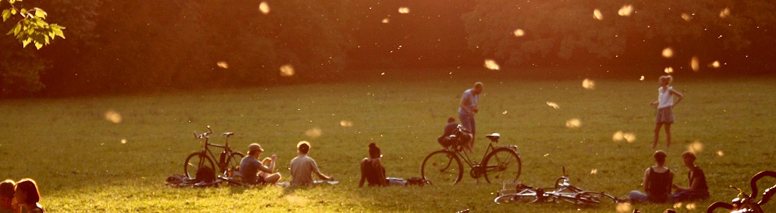 Menschen im Park in der Sonne