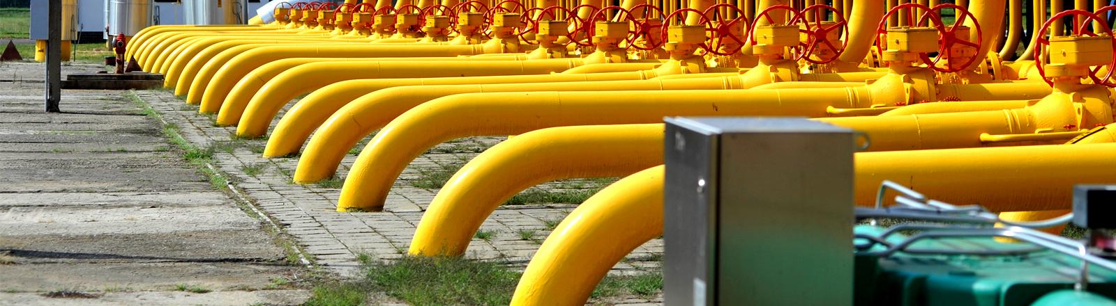 Viele gelbe Pipelines gehen an einer Stelle unter die Erde