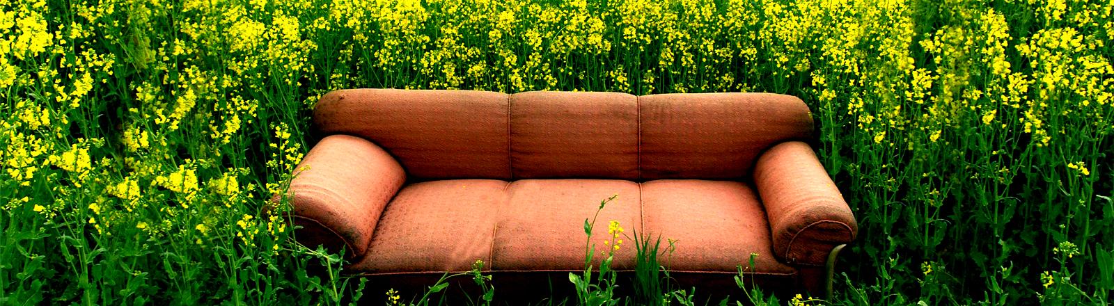 Eine rote Stoffcouch steht in einem grüngelben Rapsfeld