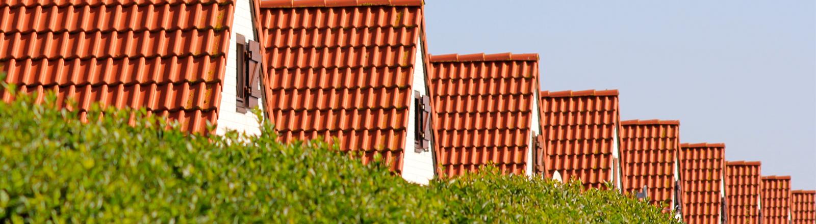 Die Dächer einer Reihenhaussiedlung hinter einer grünen Hecke