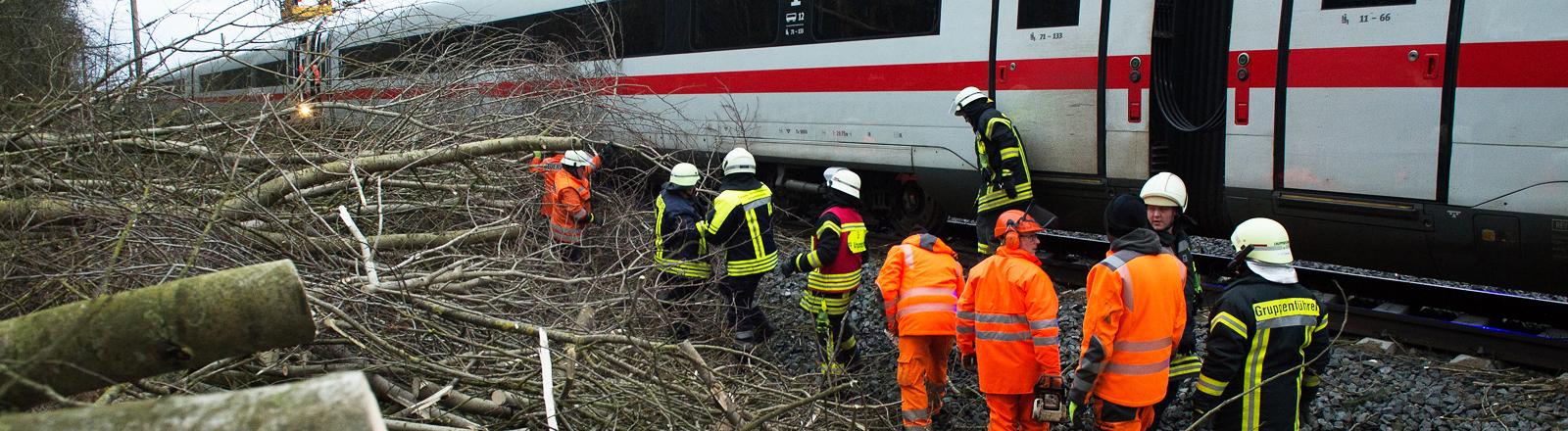 Feuerwehrleute stehen an einem haltenden ICE und räumen umgestürzte Bäume aus dem Weg
