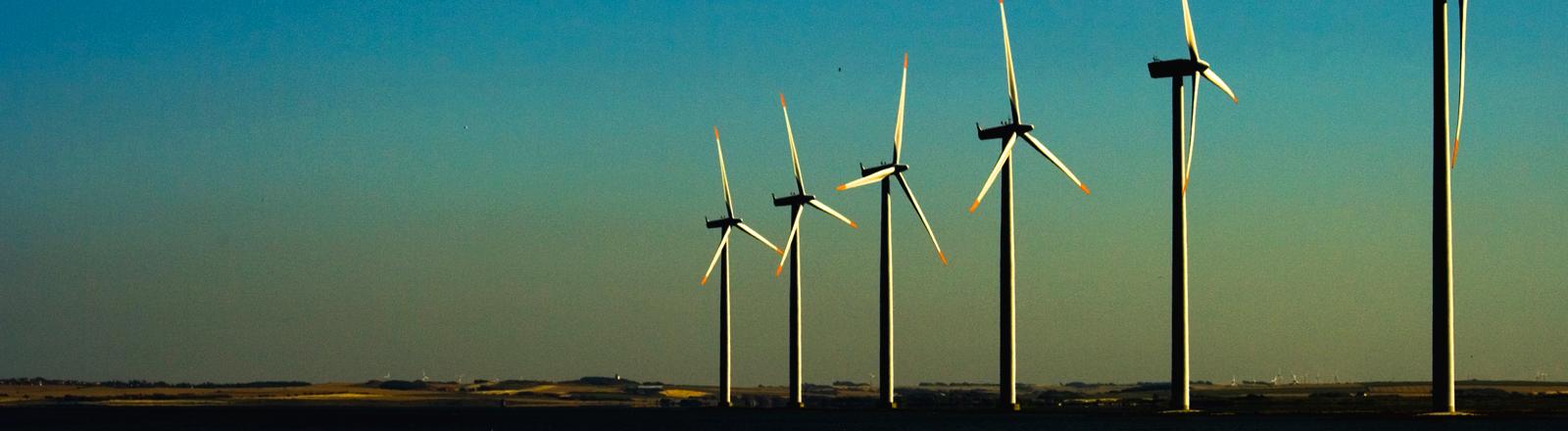 Auf einem Feld stehen große Windräder