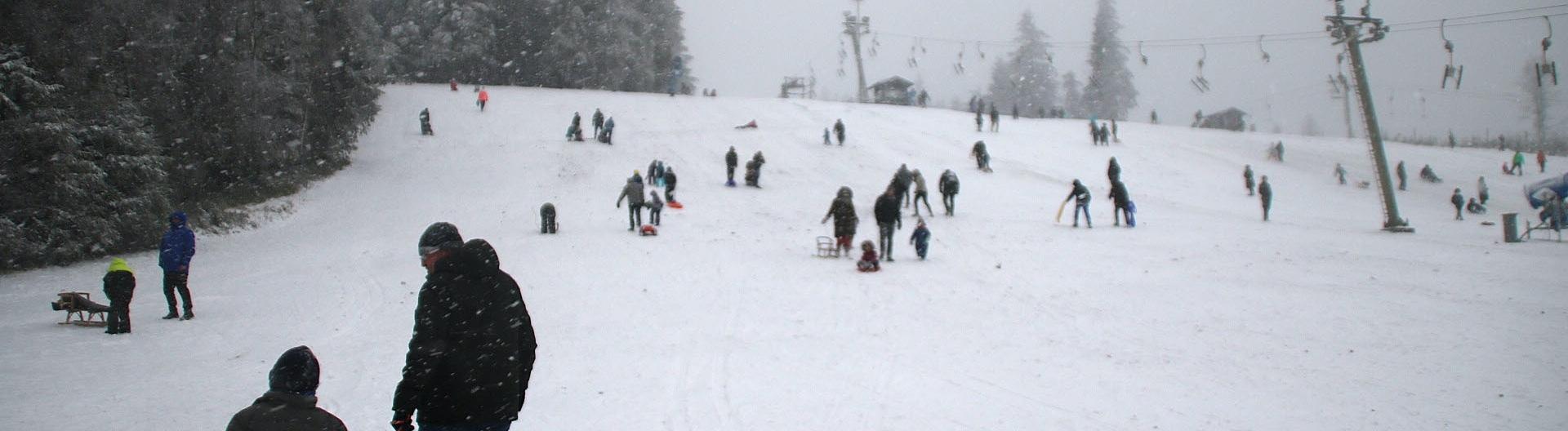 Schlittenfahrer sind trotz Sperrung der Skigebiete auf dem Kahlen Asten unterwegs