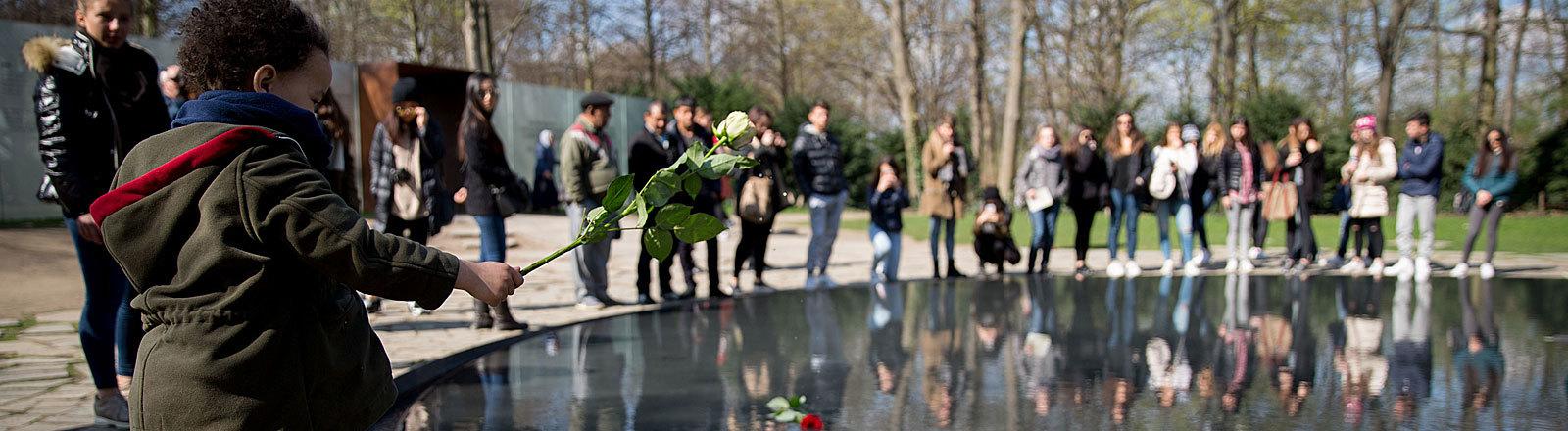 Ein Junge wirft in Berlin an der Gedenkstätte für die in der Zeit des Nationalsozialismus ermordeten Sinti und Roma eine Rose ins Wasser (08.04.2016); Foto: dpa