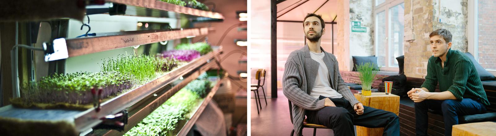 Infarm Prototyp - inzwischen stehen erste Zuchtschränke in Supermärkten und die Gründerbrüder Erez und Guy Galonska im Jahr 2015