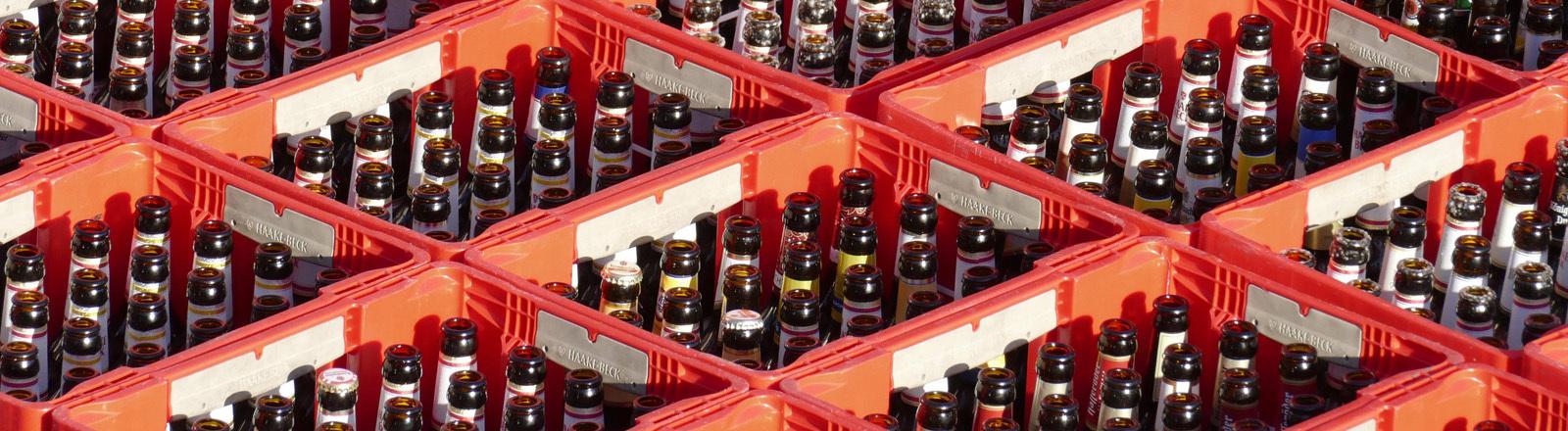 Leere Bierflaschen in Kästen