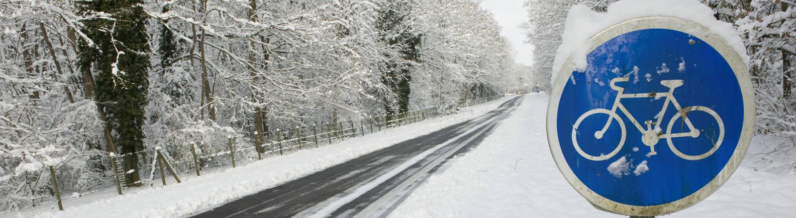 Eine winterliche Straße. Die Straße ist geräumt. Der Radweg ist voll Schnee.