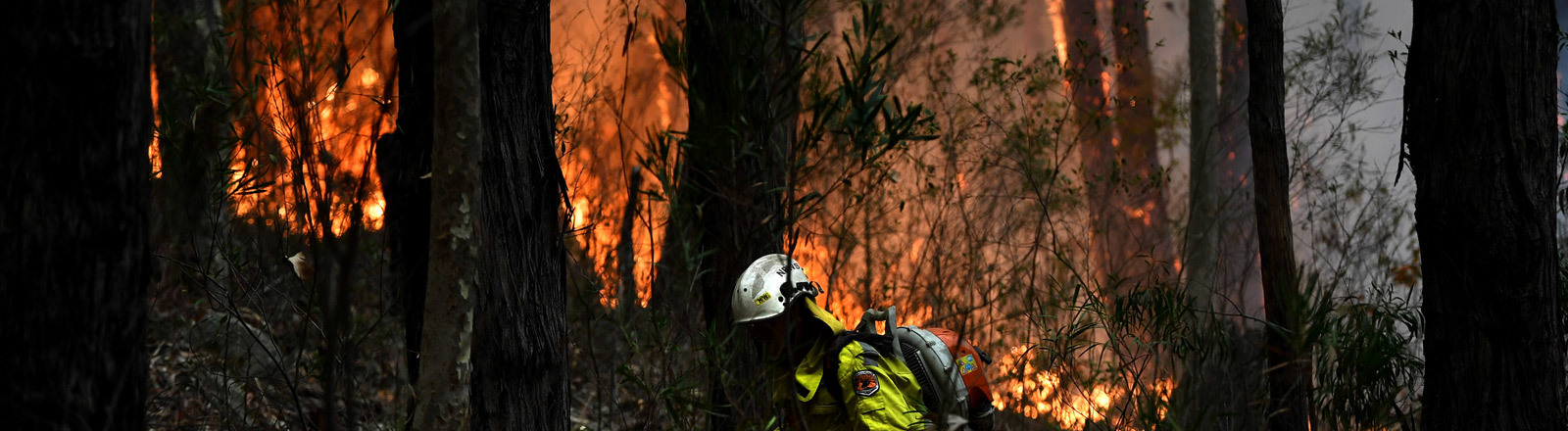 Feuerwehrmann bekämpft Waldbrand in Australien