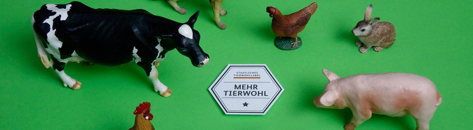 """Tiermodelle um das Label """"Mehr Tierwohl"""""""