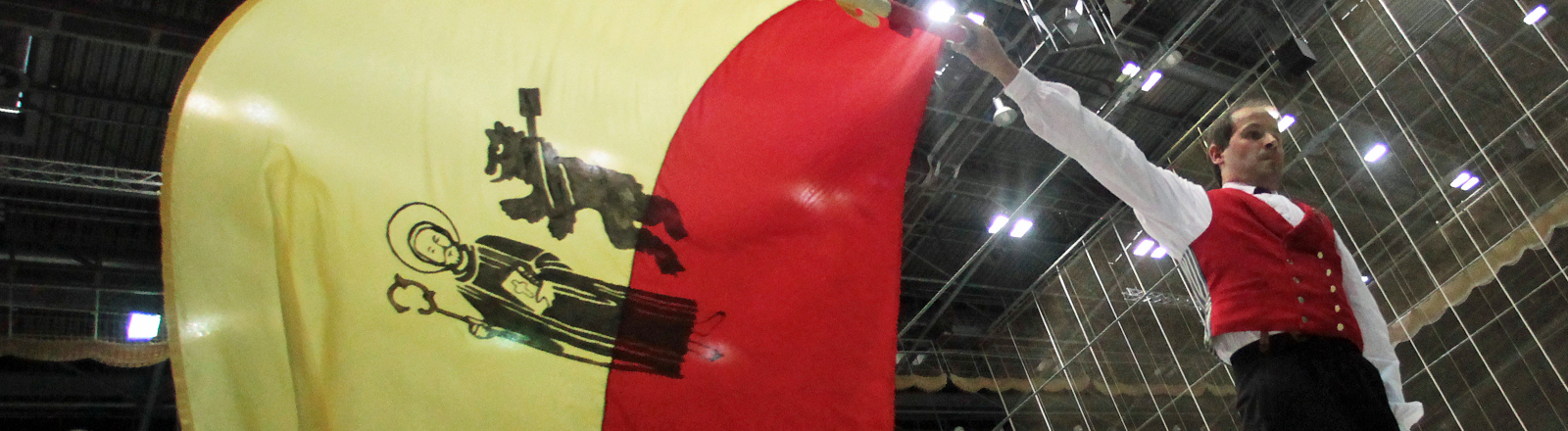 Ein Mann schwingt am Freitag (17.09.2010) in der Ballsporthalle in Frankfurt am Main eine Fahne
