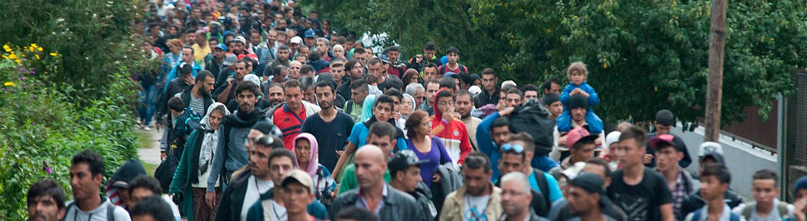 Flüchtlinge in Roszke in Ungarn