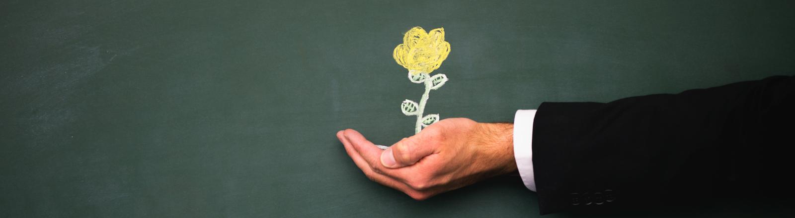Aus einer Hand wächst eine Blume.