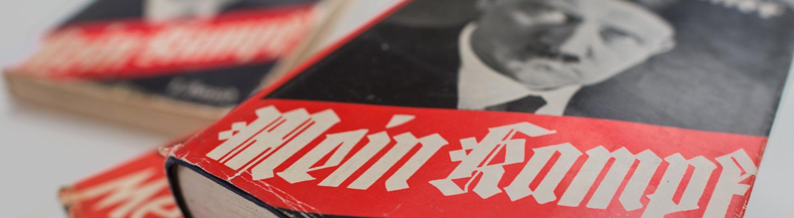"""Drei Bücher """"Mein Kampf"""" liegen auf einem weißen Hintergrund. Zwei auf einem Stapel, eines rechts dahinter; Foto: dpa"""