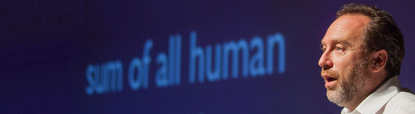 Jimmy Wales, Wikipedia-Gründer