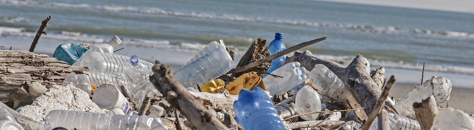 Am Meer liegen Plastikflaschen.