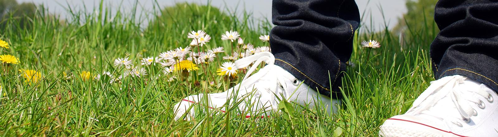 Mann steht mit weißen Sneakers auf grüner Blumenwiese.