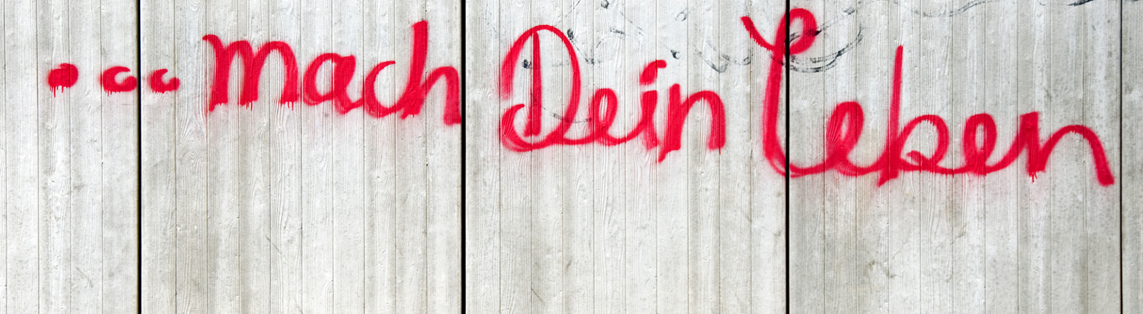 """Auf einer Wand steht """"...mach Dein Leben"""" geschrieben."""