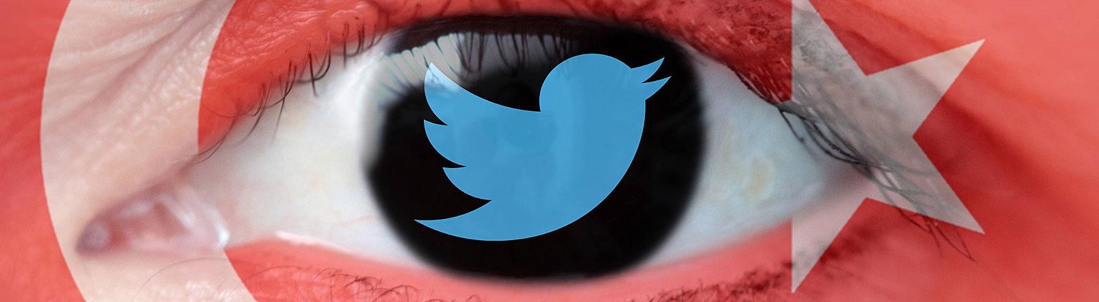 Symbolbild Internetzensur: Logo von Twitter in einem menschlichen Auge vor der Flagge der Türkei