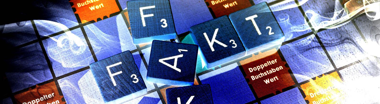 """Die Wörter """"Fake"""" und """"Fakt"""" aus Buchstaben auf Spielbrett gelegt, verfremdet"""