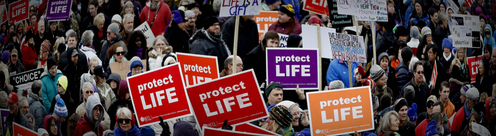 March for Life 22.01.2017 in St. Paul