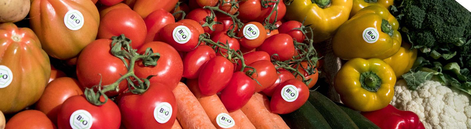 Biogemüse mit Tomaten, Paprika, Karotten, Zucchini.