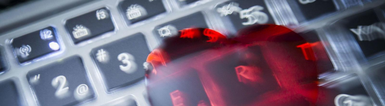 Herz auf Tastatur, Ausschnitt