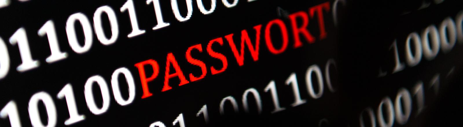 """Auf einem Monitor steht """"Passwort""""."""