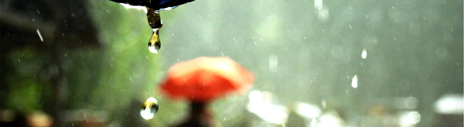 Von einem Regenschirm tropfen dicke Regentropfen