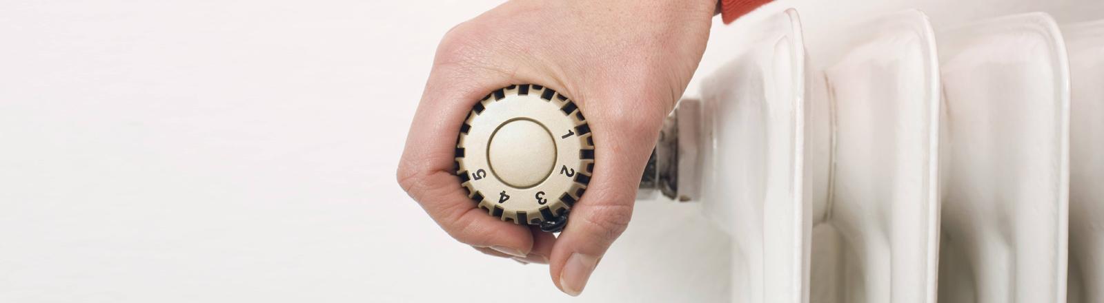 Heizkörper mit Thermostat-Regler