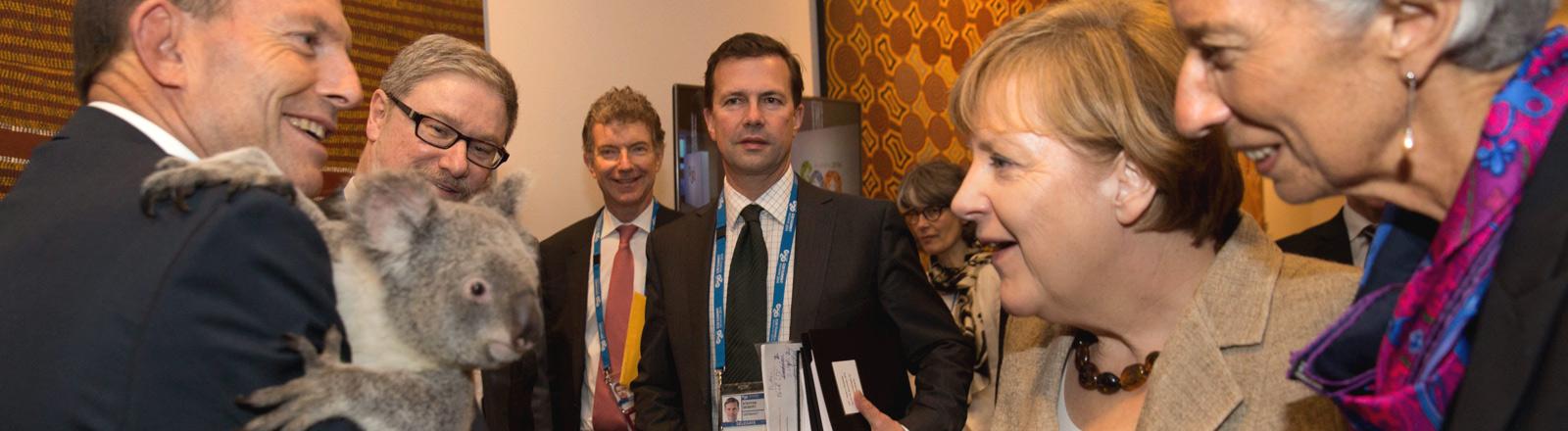 Tony Abbott hält beim G20-Gipfel am 16.11.2014 einen Koala auf dem Arm, der von Angela Merkel und Christine Lagarde bestaunt wird.